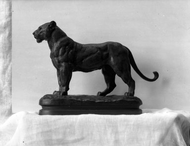 Antoine-Louis Barye (French, 1795-1875). <em>A Lioness Standing</em>. Bronze, With base: 8 x 3 1/4 x 11 1/2 in. (20.3 x 8.3 x 29.2 cm). Brooklyn Museum, Purchased by Special Subscription, 10.172. Creative Commons-BY (Photo: Brooklyn Museum, 10.172_glass_bw.jpg)