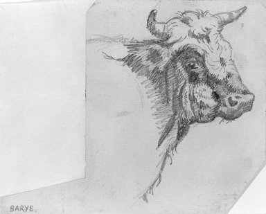 Antoine-Louis Barye (French, 1795-1875). <em>Head of a Bull</em>, n.d. Graphite on laid paper, Sheet: 4 1/4 x 5 1/4 in. (10.8 x 13.3 cm). Brooklyn Museum, Purchased by Special Subscription, 10.216 (Photo: Brooklyn Museum, 10.216_bw.jpg)