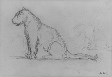 Antoine-Louis Barye (French, 1795-1875). <em>Two Lionesses Facing Left</em>, n.d. Graphite on laid paper, Sheet: 5 1/8 x 7 9/16 in. (13 x 19.2 cm). Brooklyn Museum, Purchased by Special Subscription, 10.218 (Photo: Brooklyn Museum, 10.218_bw.jpg)
