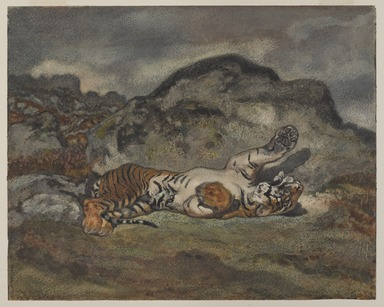 Antoine-Louis Barye (French, 1795-1875). <em>Rolling Tiger (Tigre se roulant)</em>, ca. 1840. Watercolor and opaque watercolor on wove paper, sheet: 9 5/16 × 11 5/16 in. (23.7 × 28.7 cm). Brooklyn Museum, Purchased by Special Subscription, 10.96 (Photo: , 10.96_PS9.jpg)