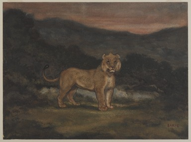Antoine-Louis Barye (French, 1795-1875). <em>Standing Lion (Lion debout)</em>, n.d. Watercolor, gouache, and pastel on cream-colored wove paper, 9 11/16 x 13 in. (24.6 x 33 cm). Brooklyn Museum, Purchased by Special Subscription, 10.98 (Photo: , 10.98_PS9.jpg)
