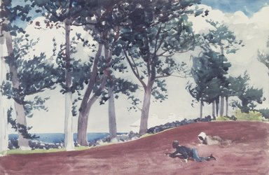 Winslow Homer (American, 1836-1910). <em>House and Trees in Bermuda</em>, 1899. Watercolor over pencil, 14 x 21 in. (35.6 x 53.3 cm). Brooklyn Museum, Museum Collection Fund and Special Subscription, 11.536 (Photo: Brooklyn Museum, 11.536_transp5990.jpg)
