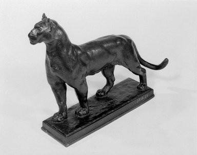 Alexander Phimister Proctor (American, 1862-1950). <em>Puma</em>, 1909. Bronze, 11 5/8 x 3 3/4 x 15 1/2 in., 11.4 lb. (29.5 x 9.5 x 39.4 cm, 5.17kg). Brooklyn Museum, Gift of George D. Pratt, 12.896. Creative Commons-BY (Photo: Brooklyn Museum, 12.896_bw.jpg)