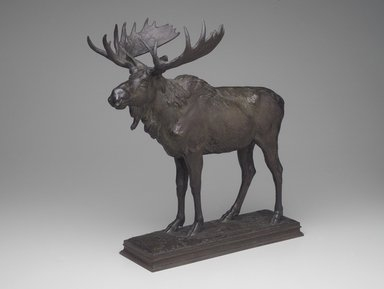 Alexander Phimister Proctor (American, 1862-1950). <em>Moose</em>, ca. 1893. Bronze, 18 1/2 x 9 1/2 x 16 3/4 in. (47 x 24.1 x 42.5 cm). Brooklyn Museum, Gift of George D. Pratt, 13.1088. Creative Commons-BY (Photo: Brooklyn Museum, 13.1088.jpg)