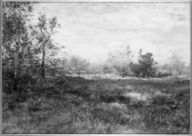 Alexander Helwig Wyant (American, 1836-1892). <em>Landscape</em>, ca. 1884-1886. Oil on canvas, 20 x 27 7/8 in. (50.8 x 70.8 cm). Brooklyn Museum, Bequest of Charles A. Schieren, 15.303 (Photo: Brooklyn Museum, 15.303_framed_bw.jpg)