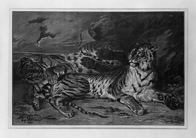Léon-Alphonse-Alfred Prunaire (French, 1867-1900). <em>Jeune Tigre Jouant</em>. Wood engraving printed in bistre on loose China paper, 9 5/16 x 13 7/8 in. (23.6 x 35.2 cm). Brooklyn Museum, Gift of Samuel P. Avery, 16.496 (Photo: Brooklyn Museum, 16.496_bw.jpg)