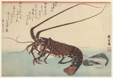 Utagawa Hiroshige (Ando) (Japanese, 1797-1858). <em>Crayfish and Two Shrimps</em>, ca. 1840. Woodblock color print, 9 3/4 x 14 5/16 in. (24.8 x 36.3 cm). Brooklyn Museum, Museum Collection Fund, 16.524 (Photo: Brooklyn Museum, 16.524_IMLS_PS3.jpg)
