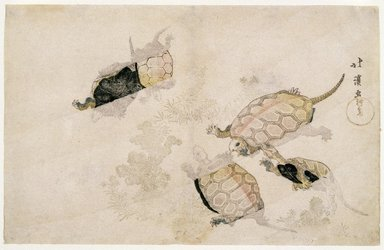 Totoya Hokkei (Japanese, 1780-1850). <em>Tortoises Swimming among Marine Plants</em>, 19th century. Color woodblock print on paper, 9 5/8 x 14 15/16 in. (24.4 x 38 cm). Brooklyn Museum, Museum Collection Fund, 16.549 (Photo: Brooklyn Museum, 16.549_IMLS_SL2.jpg)