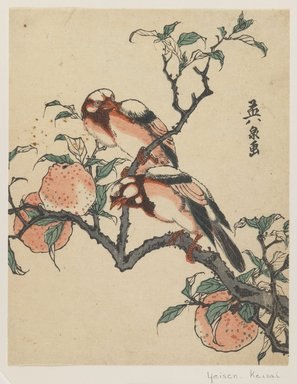 Eisen Keisai (Japanese, 1790-1848). <em>Pomegranates and Birds</em>, ca. 1840. Color woodblock print on paper, 8 1/2 x 6 11/16 in. (21.6 x 17 cm). Brooklyn Museum, Museum Collection Fund, 16.551 (Photo: Brooklyn Museum, 16.551_IMLS_PS3.jpg)