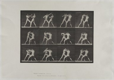 Eadweard Muybridge (British, 1830-1904). <em>Animal Locomotion</em>, 1872-1885, copyrighted 1887. Photogravure, sheet: 19 1/4 x 24 in. (48.9 x 61 cm). Brooklyn Museum, Anonymous gift in memory of Jack Boulton, 1989.30.28 (Photo: Brooklyn Museum, 1989.30.28_view1_PS9.jpg)