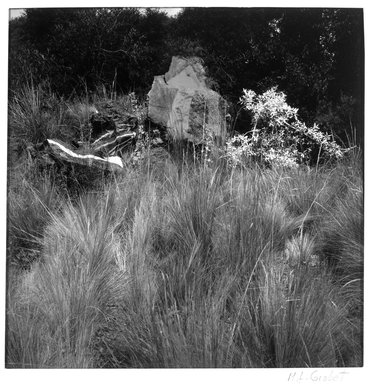 Lourdes Grobet (Mexican, born 1940). <em>Untitled (Rocks Painted Yellow, Red, White, Grass Painted Red)</em>, ca. 1986. Silver dye bleach photograph (Cibachrome), image: 7 1/2 x 7 1/2 in. (19.1 x 19.1 cm). Brooklyn Museum, Gift of Marcuse Pfeifer, 1990.119.16. © artist or artist's estate (Photo: Brooklyn Museum, 1990.119.16_bw.jpg)