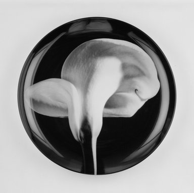 "Robert Mapplethorpe (American, 1946-1989). <em>Plate, ""Calla Lily,""</em> 1989. Porcelain, 1 3/4 x 12 x 12 in. (4.4 x 30.5 x 30.5 cm). Brooklyn Museum, Gift of Swid Powell, 1990.34.4. Creative Commons-BY (Photo: Brooklyn Museum, 1990.34.4_view1_bw.jpg)"