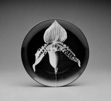 "Robert Mapplethorpe (American, 1946-1989). <em>Plate, ""Orchid,""</em> 1989. Porcelain, 1 3/8 x 12 x 12 in. (3.5 x 30.5 x 30.5 cm). Brooklyn Museum, Gift of Swid Powell, 1990.34.6. Creative Commons-BY (Photo: Brooklyn Museum, 1990.34.6_view2_bw.jpg)"