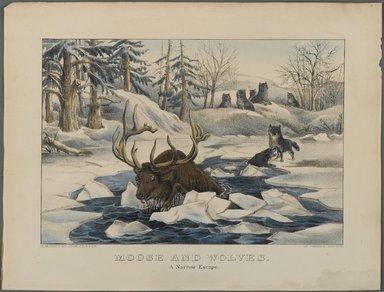 Currier & Ives (American). <em>Moose and Wolves,  A Narrow Escape</em>, n.d. Hand-colored lithograph on wove paper, Sheet: 11 3/4 x 15 7/8 in. (29.9 x 40.4 cm). Brooklyn Museum, Gift of Mrs. Harry Elbaum in honor of Daniel Brown, art critic, 1991.285.9 (Photo: Brooklyn Museum, 1991.285.9_PS1.jpg)