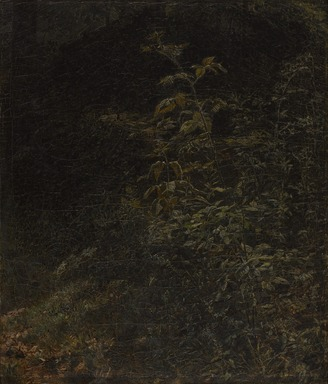 William Trost Richards (American, 1833-1905). <em>Blackberry Bush</em>, 1858. Oil on canvas, 14 3/4 x 12 1/2 in. (37.5 x 31.8 cm). Brooklyn Museum, Gift of Mrs. Theodore Conant, 1992.105 (Photo: Brooklyn Museum, 1992.105_PS9.jpg)