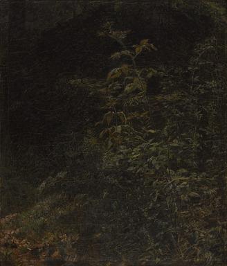 William Trost Richards (American, 1833-1905). <em>Blackberry Bush</em>, 1858. Oil on canvas, 14 3/4 x 12 1/2 in. (37.5 x 31.8 cm). Brooklyn Museum, Gift of Mrs. Theodore Conant, 1992.105 (Photo: Brooklyn Museum, 1992.105_PS9.jpg)