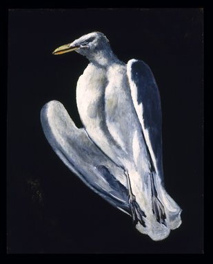 Marsden Hartley (American, 1877-1943). <em>Gull</em>, 1942-1943. Oil on fabricated board, 28 x 22 in. (71.1 x 55.9 cm). Brooklyn Museum, Bequest of Edith and Milton Lowenthal, 1992.11.21. © artist or artist's estate (Photo: Brooklyn Museum, 1992.11.21_SL1.jpg)