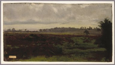 Auguste-François Bonheur (French, 1824-1884). <em>Marshlands</em>, mid 1850s. Oil on paper, 6 1/2 x 12 3/16 in. (16.5 x 31 cm). Brooklyn Museum, Healy Purchase Fund B, 1993.123.3 (Photo: Brooklyn Museum, 1993.123.3_SL1.jpg)