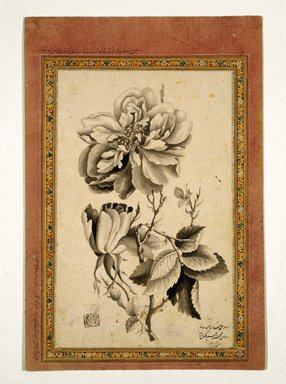 Mirza Baba (flourished 1780-1830). <em>Rose</em>, AH 1214 /1799-1800 C.E. Ink wash on paper, Sheet: 10 5/8 x 7 5/16 in. (27 x 18.5 cm). Brooklyn Museum, Gift of the Asian Art Council, 1993.58 (Photo: Brooklyn Museum, 1993.58_IMLS_SL2.jpg)