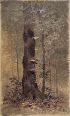 Francis Hopkinson Smith (American, 1838-1915). <em>In the Woods</em>, 1877. Transparent and opaque watercolor and black chalk on beige, thick, rough-textured woodpulp board, 26 7/16 x 16 1/16 in. (67.2 x 40.8 cm). Brooklyn Museum, Gift of the American Art Council, 1994.65 (Photo: Brooklyn Museum, 1994.65_transp599.jpg)