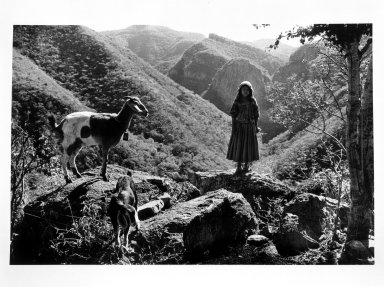 Robin Schwartz (American, born 1957). <em>Rosa and Goats on Mountain Top</em>, 1992. Gelatin silver photograph, sheet: 16 x 20 in. Brooklyn Museum, Purchased with funds given by the Horace W. Goldsmith Foundation, Harry Kahn, and Mrs. Carl L. Selden, 1994.81. © artist or artist's estate (Photo: Brooklyn Museum, 1994.81_bw.jpg)