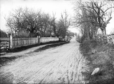 Daniel Berry Austin (American, born 1863, active 1899-1909). <em>Neck Road at Conover's near Avenue V, Gravesend, Brooklyn</em>, October 1899. Gelatin silver glass dry plate negative Brooklyn Museum, Brooklyn Museum/Brooklyn Public Library, Brooklyn Collection, 1996.164.1-110 (Photo: Brooklyn Museum, 1996.164.1-110_glass_bw_SL1.jpg)
