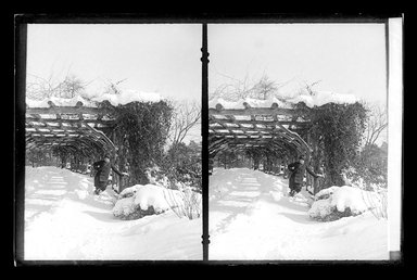 Daniel Berry Austin (American, born 1863, active 1899-1909). <em>Prospect Park, Late Snow, Brooklyn</em>, April 10, 1907. Gelatin silver glass dry plate negative Brooklyn Museum, Brooklyn Museum/Brooklyn Public Library, Brooklyn Collection, 1996.164.1-174 (Photo: Brooklyn Museum, 1996.164.1-174_glass_SL1.jpg)