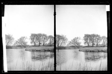 Daniel Berry Austin (American, born 1863, active 1899-1909). <em>Ryder's Pond (Strome Kill), Looking East, Willows, Avenue S and East 32 Street, Gravesend, Brooklyn</em>, ca. 1899-1909. Gelatin silver glass dry plate negative Brooklyn Museum, Brooklyn Museum/Brooklyn Public Library, Brooklyn Collection, 1996.164.1-78 (Photo: Brooklyn Museum, 1996.164.1-78_IMLS_SL2.jpg)
