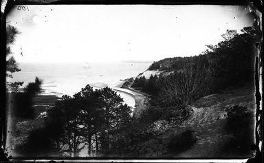 George Bradford Brainerd (American, 1845-1887). <em>Shore, St. Johnland, Long Island</em>, ca. 1872-1887. Collodion silver glass wet plate negative Brooklyn Museum, Brooklyn Museum/Brooklyn Public Library, Brooklyn Collection, 1996.164.2-100 (Photo: Brooklyn Museum, 1996.164.2-100_glass_bw_SL4.jpg)