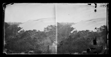 George Bradford Brainerd (American, 1845-1887). <em>The Big Sand Dunes, Coney Island, Brooklyn</em>, ca. 1872-1887. Collodion silver glass wet plate negative Brooklyn Museum, Brooklyn Museum/Brooklyn Public Library, Brooklyn Collection, 1996.164.2-1127 (Photo: Brooklyn Museum, 1996.164.2-1127_glass_IMLS_SL2.jpg)