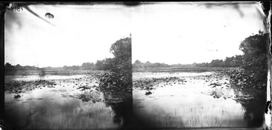 George Bradford Brainerd (American, 1845-1887). <em>Valley Stream, New York</em>, 1874. Collodion silver glass wet plate negative Brooklyn Museum, Brooklyn Museum/Brooklyn Public Library, Brooklyn Collection, 1996.164.2-1319 (Photo: Brooklyn Museum, 1996.164.2-1319_glass_bw_SL4.jpg)
