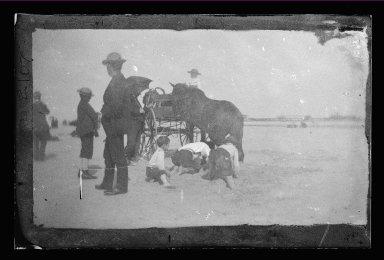 George Bradford Brainerd (American, 1845-1887). <em>Horse and Carriage, Coney Island, Brooklyn</em>, ca. 1885. Dry negative plate Brooklyn Museum, Brooklyn Museum/Brooklyn Public Library, Brooklyn Collection, 1996.164.2-2107 (Photo: Brooklyn Museum, 1996.164.2-2107_glass_IMLS_SL2.jpg)