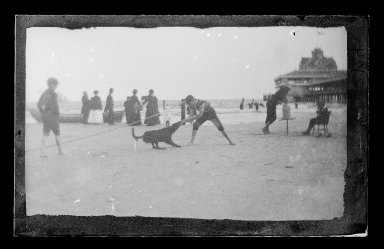 George Bradford Brainerd (American, 1845-1887). <em>Boy and Dog, Iron Pier, Coney Island, Brooklyn</em>, ca. 1872-1887. Dry negative plate Brooklyn Museum, Brooklyn Museum/Brooklyn Public Library, Brooklyn Collection, 1996.164.2-2124 (Photo: Brooklyn Museum, 1996.164.2-2124_glass_IMLS_SL2.jpg)
