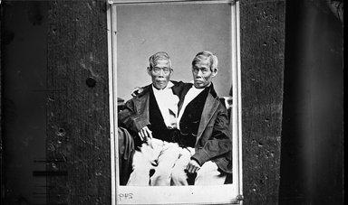 George Bradford Brainerd (American, 1845-1887). <em>Siamese Twins</em>, ca. 1872-1887. Collodion silver glass wet plate negative Brooklyn Museum, Brooklyn Museum/Brooklyn Public Library, Brooklyn Collection, 1996.164.2-249 (Photo: Brooklyn Museum, 1996.164.2-249_glass_bw_SL4.jpg)