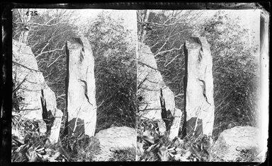 George Bradford Brainerd (American, 1845-1887). <em>Needle Rock, Fort Lee, New Jersey</em>, ca. 1872-1887. Collodion silver glass wet plate negative Brooklyn Museum, Brooklyn Museum/Brooklyn Public Library, Brooklyn Collection, 1996.164.2-253 (Photo: Brooklyn Museum, 1996.164.2-253_glass_bw_SL4.jpg)