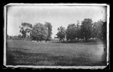 George Bradford Brainerd (American, 1845-1887). <em>Mountain, Prospect Park, Brooklyn</em>, ca. 1872-1887. Collodion silver glass wet plate negative Brooklyn Museum, Brooklyn Museum/Brooklyn Public Library, Brooklyn Collection, 1996.164.2-269 (Photo: Brooklyn Museum, 1996.164.2-269_glass_IMLS_SL2.jpg)