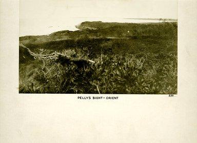 George Bradford Brainerd (American, 1845-1887). <em>Petty's Bight, Orient, Long Island</em>, ca. 1872-1887. Collodion silver glass wet plate negative Brooklyn Museum, Brooklyn Museum/Brooklyn Public Library, Brooklyn Collection, 1996.164.2-336 (Photo: Brooklyn Museum, 1996.164.2-336_print.jpg)