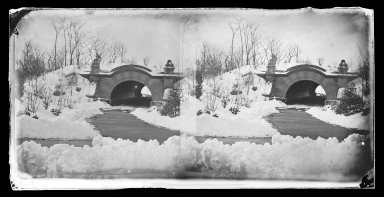 George Bradford Brainerd (American, 1845-1887). <em>Bridge, Prospect Park, Brooklyn</em>, ca. 1872-1887. Collodion silver glass wet plate negative Brooklyn Museum, Brooklyn Museum/Brooklyn Public Library, Brooklyn Collection, 1996.164.2-716 (Photo: Brooklyn Museum, 1996.164.2-716_glass_IMLS_SL2.jpg)