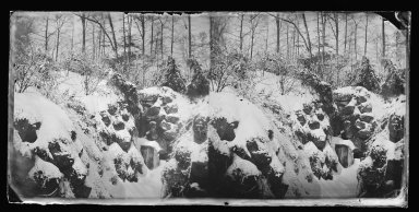 George Bradford Brainerd (American, 1845-1887). <em>Snow Scene, Prospect Park, Brooklyn</em>, ca. 1872-1887. Collodion silver glass wet plate negative Brooklyn Museum, Brooklyn Museum/Brooklyn Public Library, Brooklyn Collection, 1996.164.2-721 (Photo: Brooklyn Museum, 1996.164.2-721_glass_IMLS_SL2.jpg)