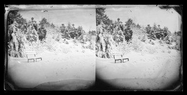 George Bradford Brainerd (American, 1845-1887). <em>Snow Scene, Prospect Park, Brooklyn</em>, ca. 1872-1887. Collodion silver glass wet plate negative Brooklyn Museum, Brooklyn Museum/Brooklyn Public Library, Brooklyn Collection, 1996.164.2-727 (Photo: Brooklyn Museum, 1996.164.2-727_glass_IMLS_SL2.jpg)