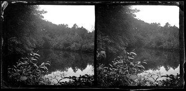 George Bradford Brainerd (American, 1845-1887). <em>Paper Mill Pond, Hohokus, New Jersey</em>, ca. 1872-1887. Collodion silver glass wet plate negative Brooklyn Museum, Brooklyn Museum/Brooklyn Public Library, Brooklyn Collection, 1996.164.2-901 (Photo: Brooklyn Museum, 1996.164.2-901_SL1.jpg)