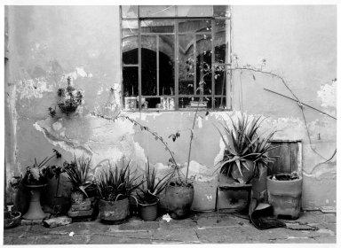 Vivian Cherry (American, 1920-2019). <em>Michoacán, Morelia, Mexico</em>, 1994. Chromogenic photograph, image: 13 1/2 x 18 1/2 in. (34.3 x 47 cm). Brooklyn Museum, Gift of the artist, 1996.59.2. © artist or artist's estate (Photo: Brooklyn Museum, 1996.59.2_bw.jpg)