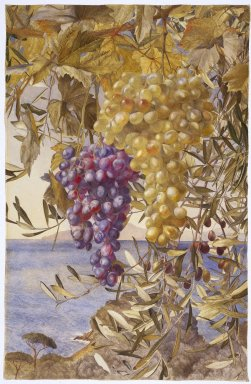Henry Roderick Newman (American, 1843-1917). <em>Grapes and Olives</em>, 1878. Watercolor with selectively applied glaze over graphite pencil on moderately thick rough-textured wove paper, 26 x 18 13/16 in. (66 x 47.8 cm). Brooklyn Museum, Purchased with funds given by Sol Schreiber in memory of Rose Schreiber, and with funds given by Joanne and Eugene Witty, Dick S. Ramsay Fund and Designated Purchase Fund, 1996.90.2 (Photo: Brooklyn Museum, 1996.90.2_SL1.jpg)