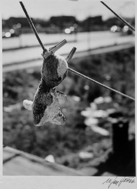 N. Jay Jaffee (American, 1921-1999). <em>Anna's Teddy Bear (Logan Street, Linden Boulevard, East New York)</em>, 1952; printed 1995. Selenium-toned gelatin silver photograph, sheet: 8 x 10 in. (20.3 x 25.4 cm). Brooklyn Museum, Gift of Paula W. Hackeling, 1997.164.29. © artist or artist's estate (Photo: Brooklyn Museum, 1997.164.29_bw.jpg)