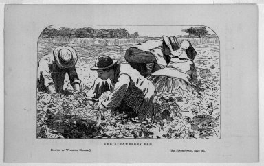 Winslow Homer (American, 1836-1910). <em>The Strawberry Bed</em>, 1868. Wood engraving, Image: 3 3/4 x 6 in. (9.5 x 15.2 cm). Brooklyn Museum, Gift of Harvey Isbitts, 1998.105.111 (Photo: Brooklyn Museum, 1998.105.111_bw.jpg)