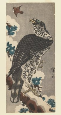 Eisen Keisai (Japanese, 1790-1848). <em>Hawk on a Snowy Pine Branch</em>, 1830. Woodblock print; ink and color on paper, 13 1/4 x 6 in.  (33.7 x 15.2 cm). Brooklyn Museum, Gift of Dr. Eleanor Z. Wallace in memory of her husband, Dr. Stanley L. Wallace, 1999.139.2 (Photo: Brooklyn Museum, 1999.139.2_IMLS_PS3.jpg)