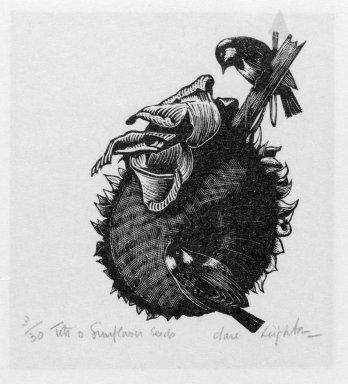 Clare Veronica Hope Leighton (American, born England 1898-1989). <em>Sunflower Seeds</em>. Etching, sheet: 5 3/8 x 3 3/4 in.  (13.7 x 9.5 cm);. Brooklyn Museum, Gift of John C. Quell, 2000.113.2. © artist or artist's estate (Photo: Brooklyn Museum, 2000.113.2_bw.jpg)