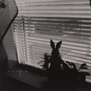 Gerard Vezzuso (American, born 1943). <em>View from Window with Rabbit, Bayville, NJ</em>, 2000. Gelatin silver photograph, sheet: 20 7/8 x 24 7/8 in.  (53.0 x 62.9  cm). Brooklyn Museum, Gift of the artist, 2000.122.6. © artist or artist's estate (Photo: , 2000.122.6_PS9.jpg)