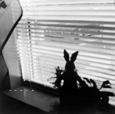 Gerard Vezzuso (American, born 1943). <em>View from Window with Rabbit, Bayville, NJ</em>, 2000. Gelatin silver photograph, sheet: 20 7/8 x 24 7/8 in.  (53.0 x 62.9  cm). Brooklyn Museum, Gift of the artist, 2000.122.6. © artist or artist's estate (Photo: Brooklyn Museum, 2000.122.6_bw.jpg)