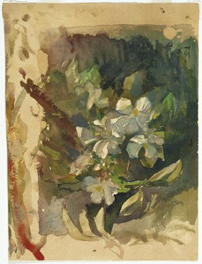 John La Farge (American, 1835-1910). <em>Apple Blossoms in Sunlight</em>, ca. 1870s. Watercolor and graphite on cream, thick, rough textured wove paper, 11 x 8 in. (27.9 x 20.3 cm). Brooklyn Museum, Bequest of Christiana C. Burnett, great-niece of the artist, 2001.47.2 (Photo: Brooklyn Museum, 2001.47.2_SL1.jpg)